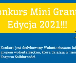 Rusza Konkurs na Mini Granty dla wolontariuszy